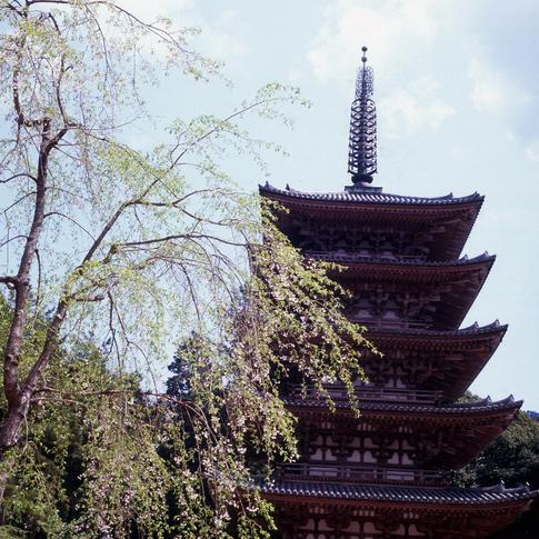 1204-66 Scan 京都醍醐寺789.jpg