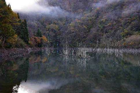 1511 徳山ダムD8D_8471.jpg