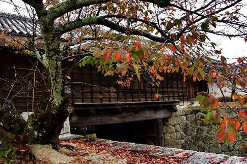 1511 松山城D8D_8415.jpg