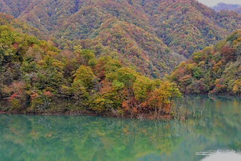 1811-610 徳山ダム D8D_2392.jpg