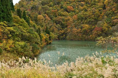 1811-610 徳山ダム DZ7_1280.jpg