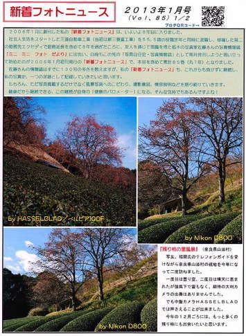 2013-01-1.jpg