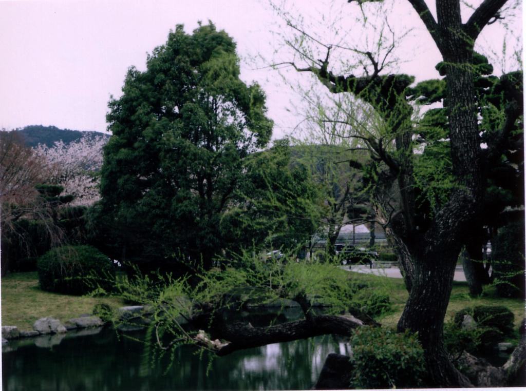 Scan10004.jpg